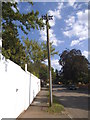 TQ2494 : Old style telegraph pole on Grange Avenue by David Howard