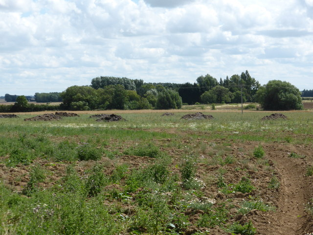 Soil improvement bob harvey geograph britain and ireland for Soil improvement