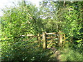 SP8909 : The West Gate into the Meadow Plots, Dancersend Reserve by Chris Reynolds