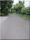 ST6267 : Queen Charlton Lane by Dr Duncan Pepper