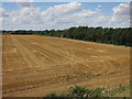 TL2869 : Harvested field at Gore Tree Farm by Hugh Venables