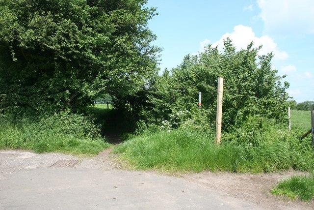 Footpath west of Danes Moss