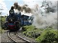 SP4725 : Beeches Light Railway - descending the bank : Week 32