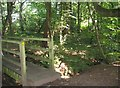 SJ6370 : Footbridge in Vale Royal Park by Sue Adair