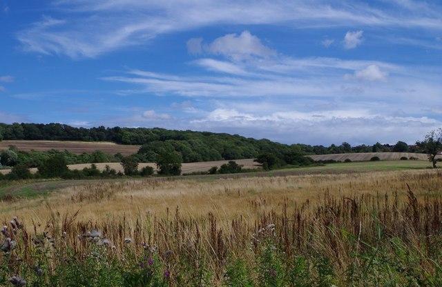 Fields towards Glapwell
