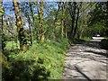 SX3170 : Lane to Kerney Bridge by Derek Harper