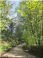 SX3470 : Haye Road by Derek Harper