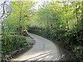 SX3470 : Lane at Bearland Bridge by Derek Harper