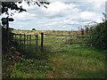 SU8674 : Footpath gate by Alan Hunt