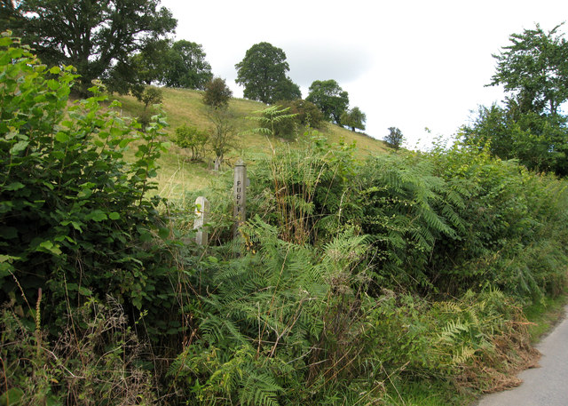 Overgrown footpath stile near Purslow