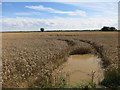 TL3867 : Waterlogged wheat field by Ramper Road by Hugh Venables