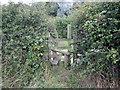 SJ3660 : Wooden Stile near Dodleston by Jeff Buck