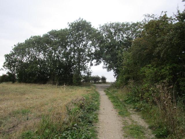 Approaching Common Lane