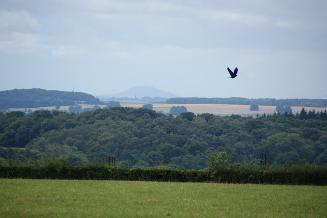 The Wrekin as seen from near Wanfield Hall
