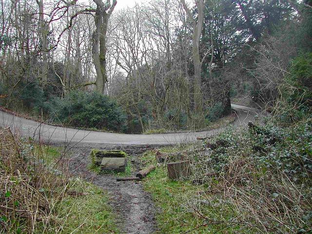 The old road across Zig Zag Road
