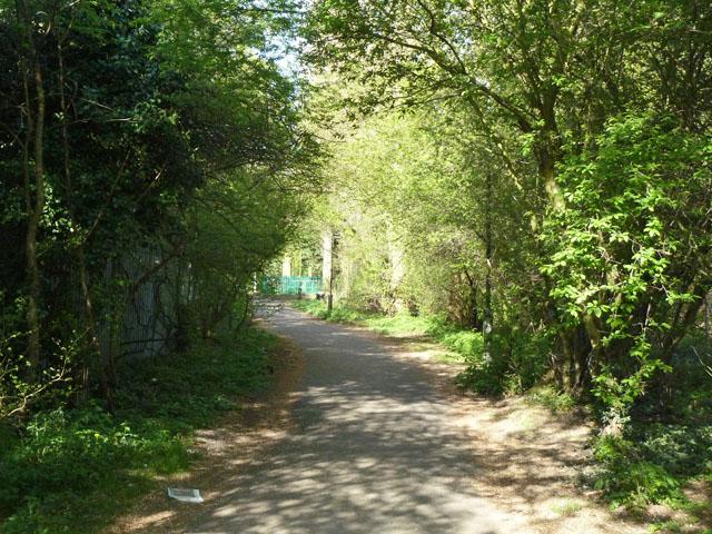 Path to Morden Park