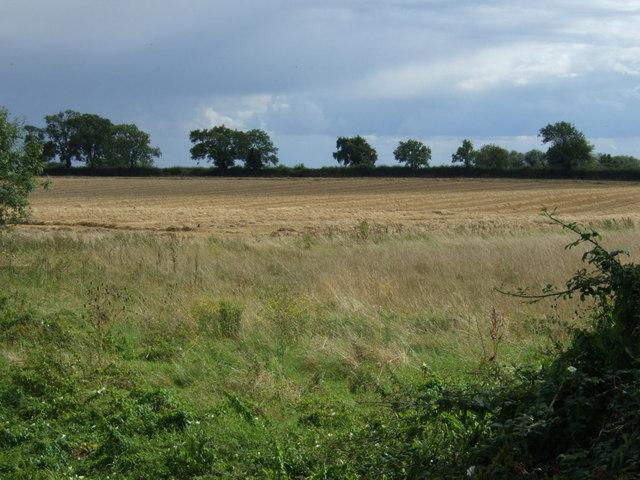 Farmland near Woodnewton