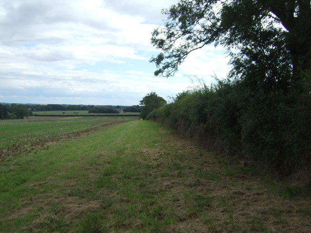 Farmland and hedgerow