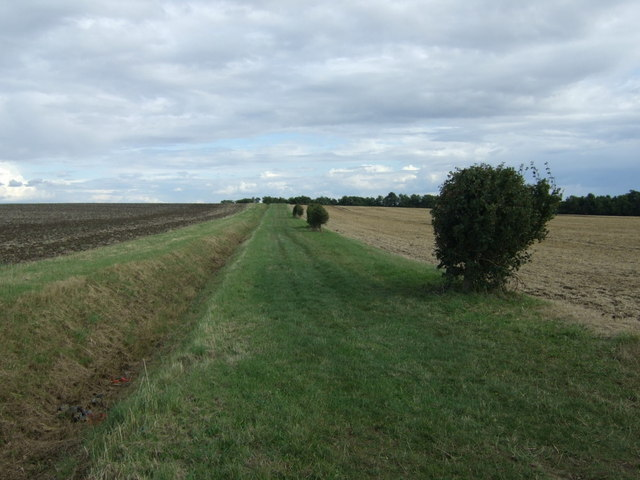 Bridleway and ditch