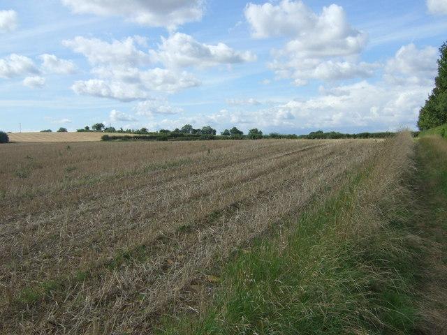 Stubble field near Nassington