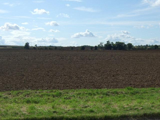 Farmland west of Fotheringhay Road