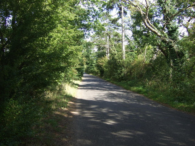 Rural road towards Elton
