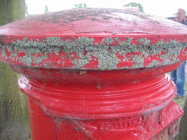 Lichen on a postbox