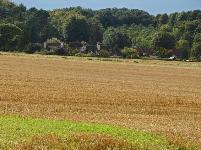 Stubble field, Clandon Downs