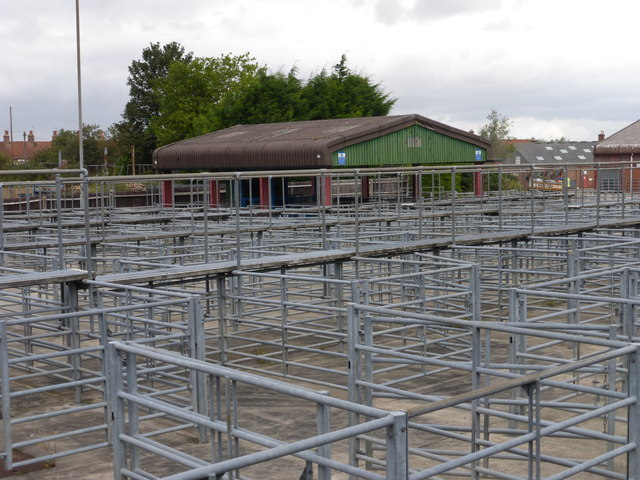 Animal pens in Louth cattle market