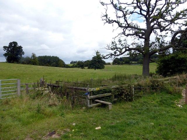 Stile and footbridge