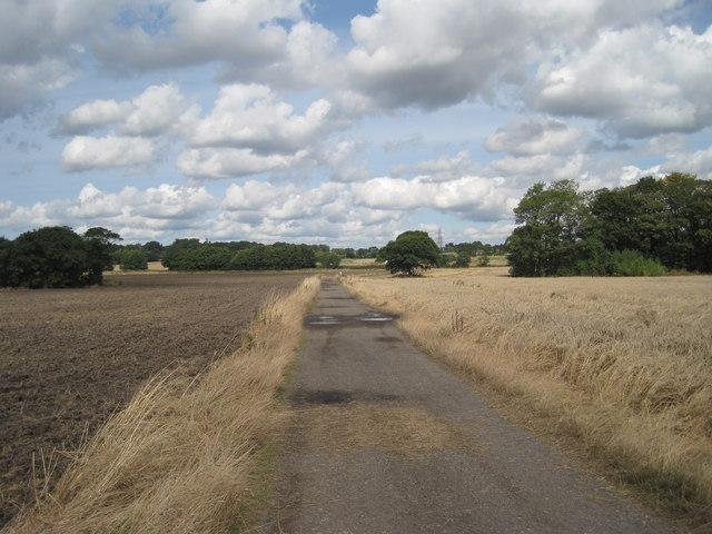 Track to Rainhill