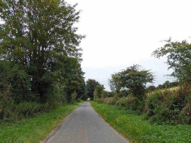 Lane near Wold Newton