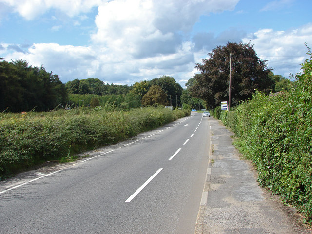 A25, Shere Road