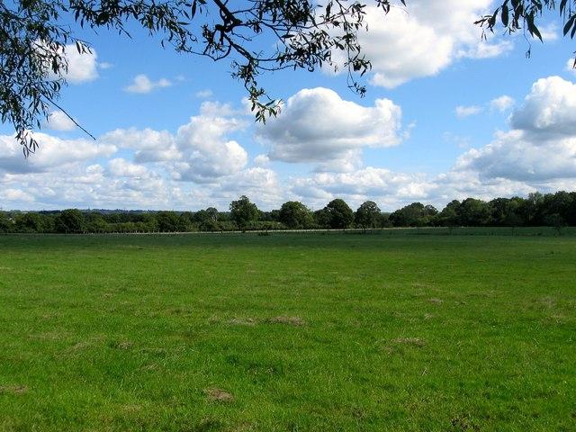 Gate Field/Angular Plot/Site of Wood Barn/Further Six Acres/Wood Field