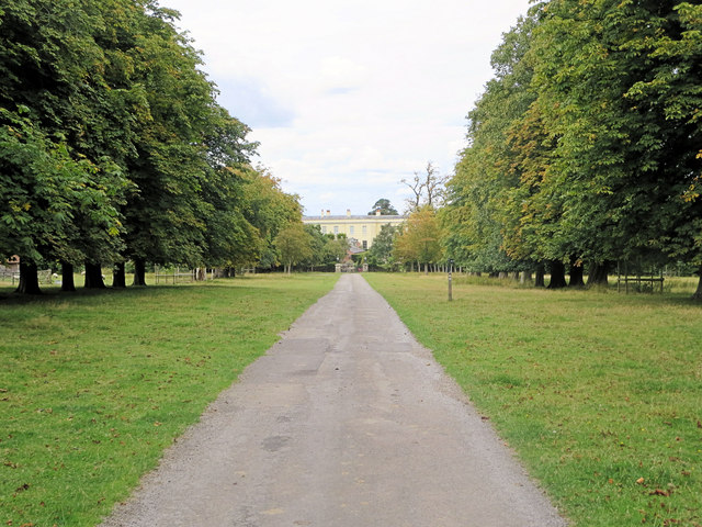 Footpath leaves the avenue Hamstead Park