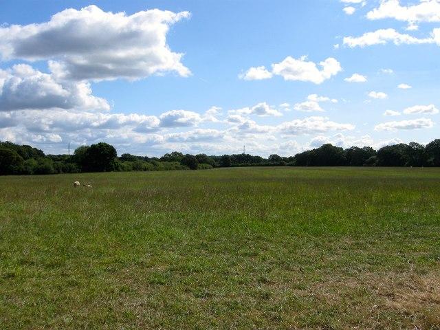 Hither Six Acres/Great Rye Field/Little Rye Field