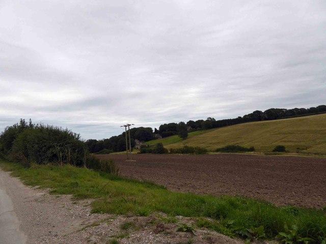 Power lines crossing farmland near North Ormsby