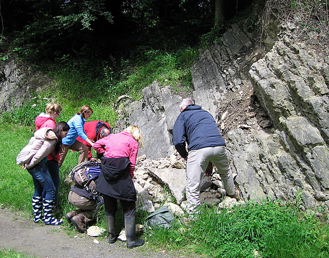 Geology group studying the limestone, Wren's Nest