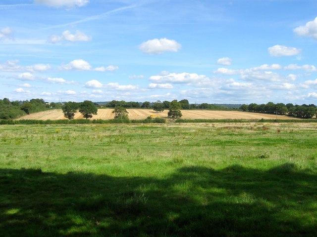 Great Mill Field (1)