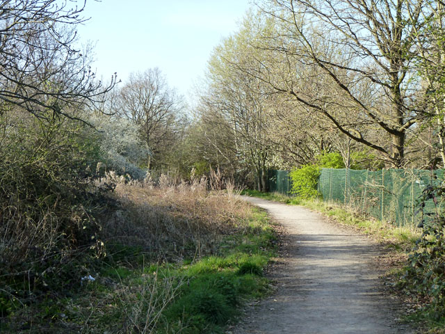 Footpath by the cemetery fence