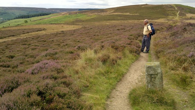 Boundary stone on Cleveland Way path with Live Moor to left