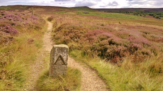 Boundary stone on Cleveland Way path looking up Gold Hill