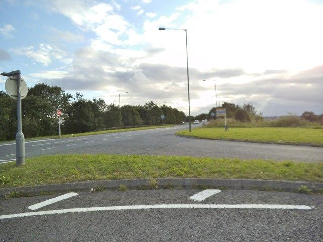 Meadow Lane View