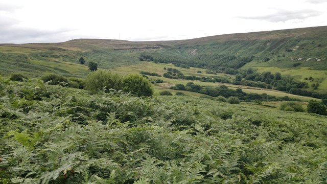 Head of Scugdale