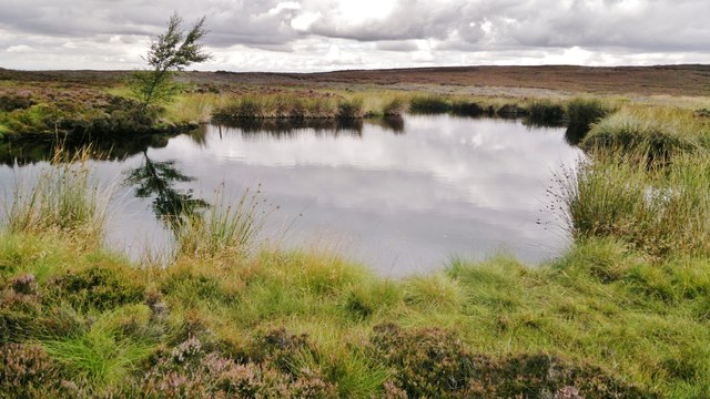 Brian's Pond at Clough Gill Top