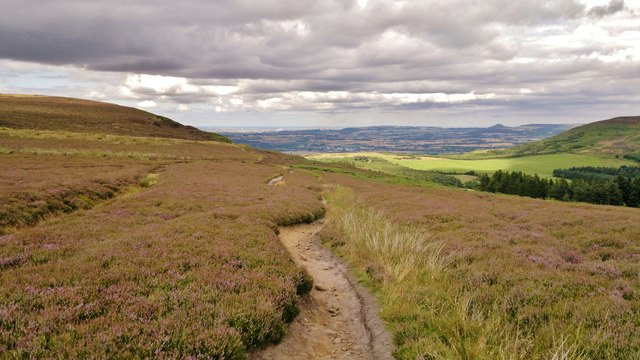 Carlton Moor, with Roseberry Topping in distance