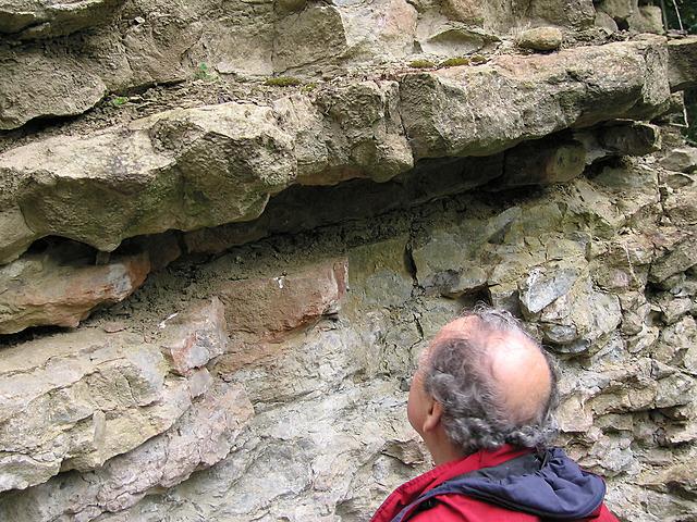 Nodular Limestone with bentonite layer