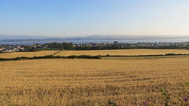 Barley, North Bank