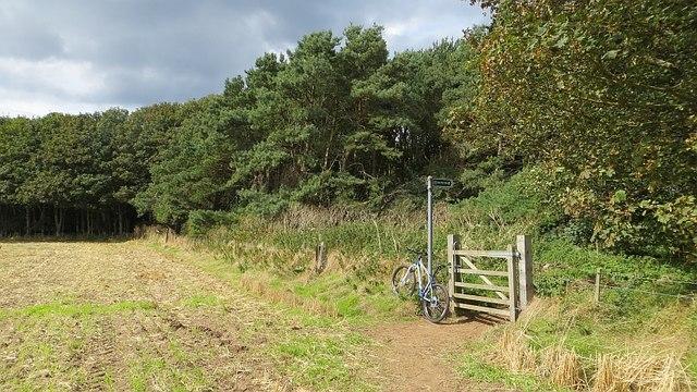 John Muir Way, East Links