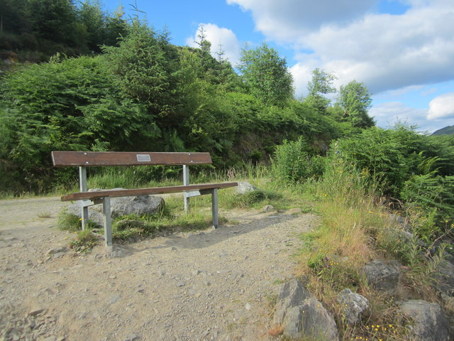Memorial bench at the path junction